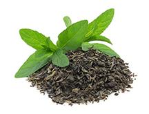 ชาเขียว1